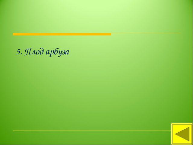 5. Плод арбуза