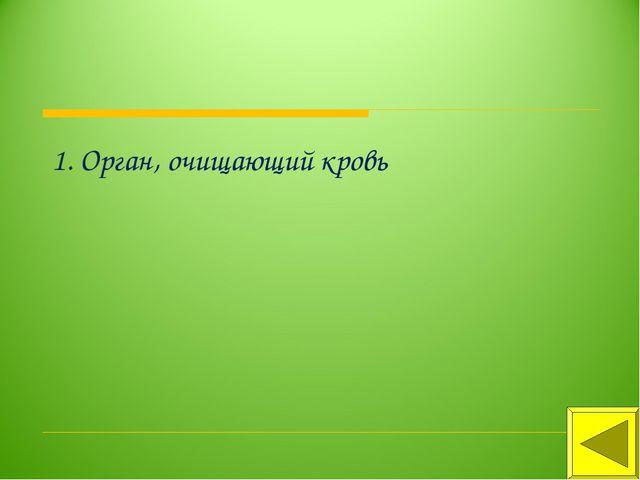 1. Орган, очищающий кровь