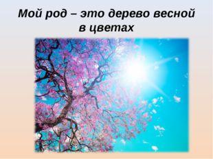 Мой род – это дерево весной в цветах