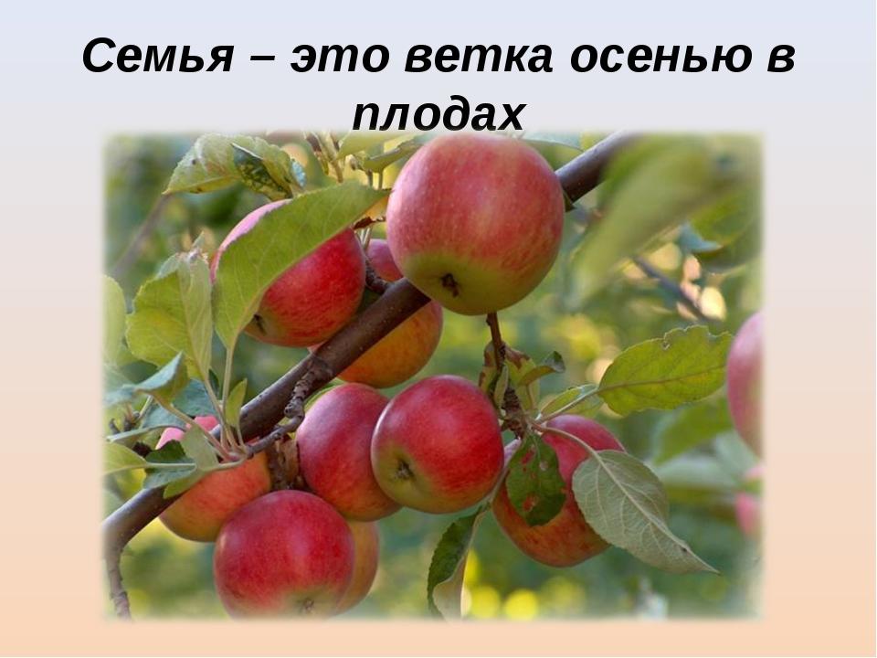 Семья – это ветка осенью в плодах