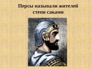 Персы называли жителей степи саками