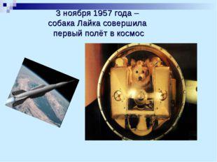 3 ноября 1957 года – собака Лайка совершила первый полёт в космос