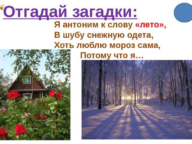 Отгадай загадки: Я антоним к слову «лето», В шубу снежную одета, Хоть люблю м...