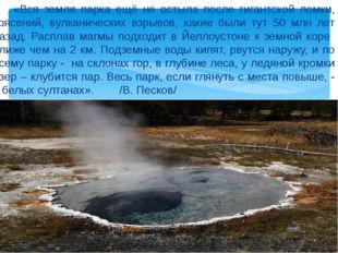 «Вся земля парка ещё не остыла после гигантской ломки, трясений, вулканическ