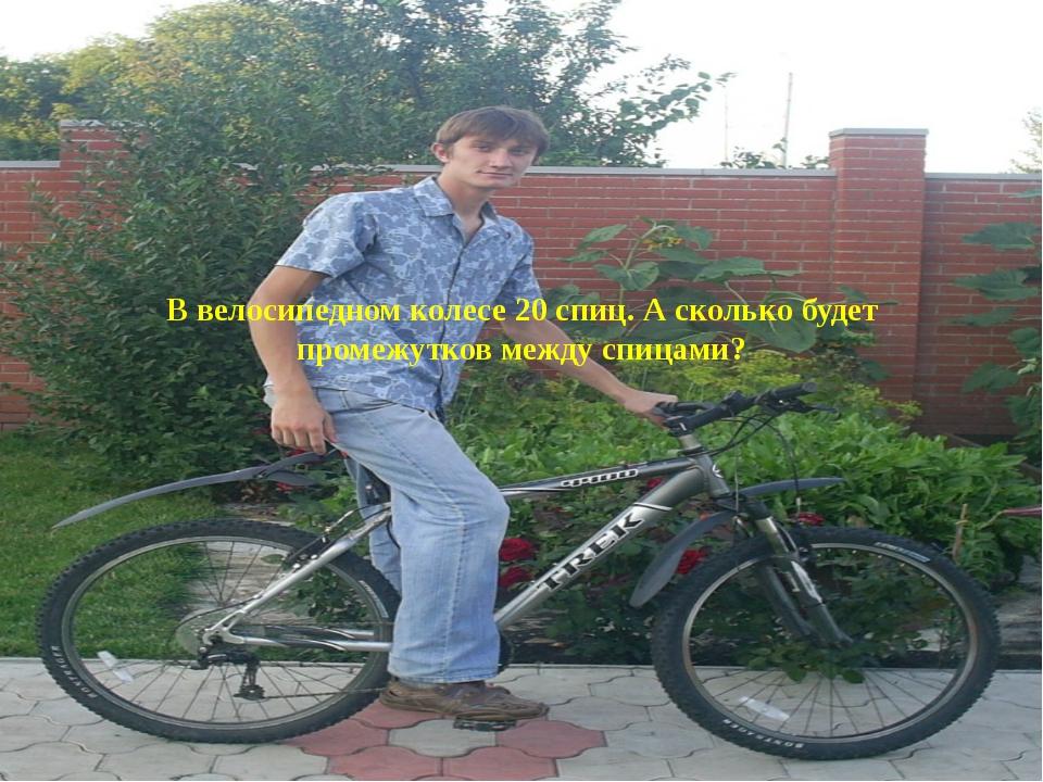 В велосипедном колесе 20 спиц. А сколько будет промежутков между спицами?