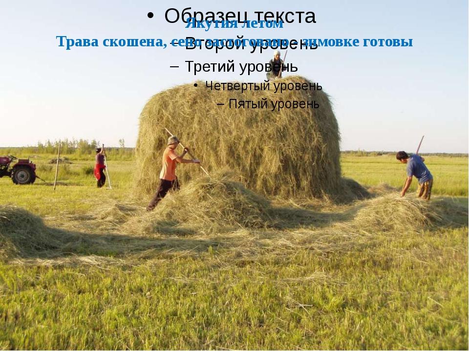 Якутия летом Трава скошена, сено застоговано - зимовке готовы