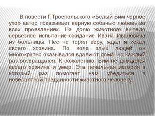 В повести Г.Троепольского «Белый Бим черное ухо» автор показывает верную соб