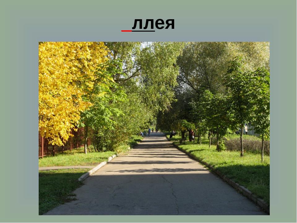 _ллея