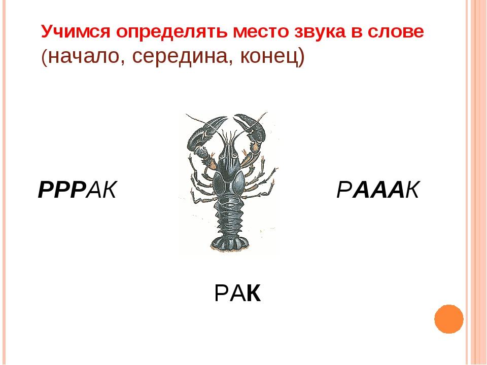Учимся определять место звука в слове (начало, середина, конец) РРРАК РАААК РАК