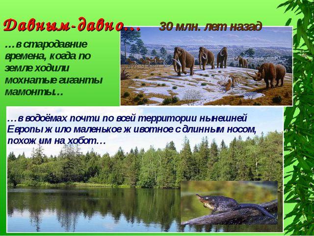 Давным-давно… 30 млн. лет назад …в стародавние времена, когда по земле ходили...