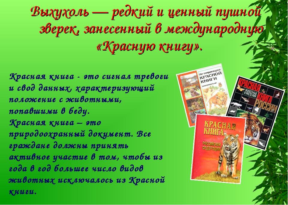 Выхухоль — редкий и ценный пушной зверек, занесенный в международную «Красную...