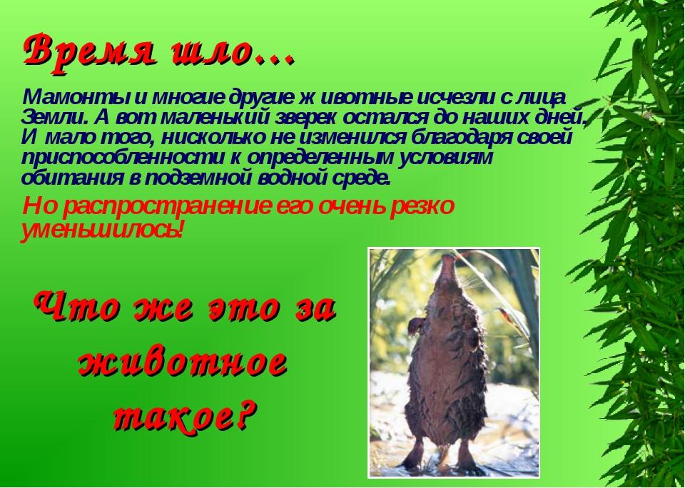 Мамонты и многие другие животные исчезли с лица Земли. А вот маленький зверек...