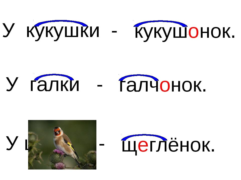 У кукушки - У галки - У щегла - галчонок. щеглёнок. кукушонок.
