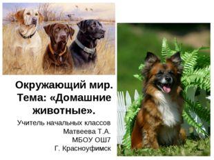 Окружающий мир. Тема: «Домашние животные». Учитель начальных классов Матвеева