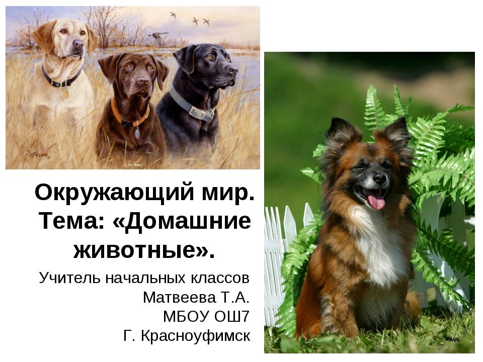 Окружающий мир. Тема: «Домашние животные». Учитель начальных классов Матвеева...