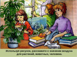 Используя рисунок, расскажите о значении воздуха для растений, животных, чело