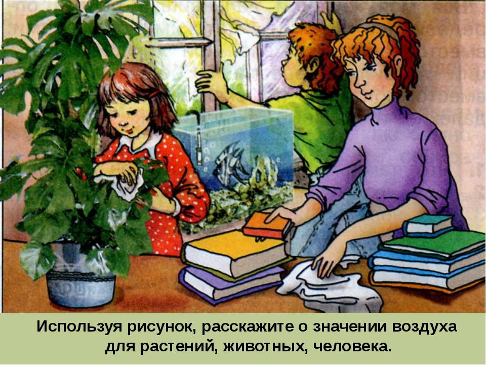Используя рисунок, расскажите о значении воздуха для растений, животных, чело...