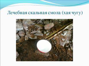 Лечебная скальная смола (хая чугу)