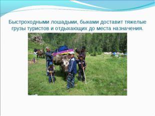 Быстроходными лошадьми, быками доставит тяжелые грузы туристов и отдыхающих д