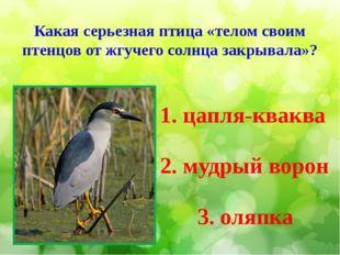 Какая серьезная птица «телом своим птенцов от жгучего солнца закрывала»? 1. ц