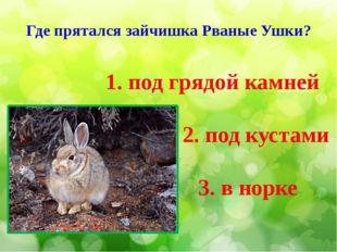 Где прятался зайчишка Рваные Ушки? 3. в норке 1. под грядой камней 2. под кус