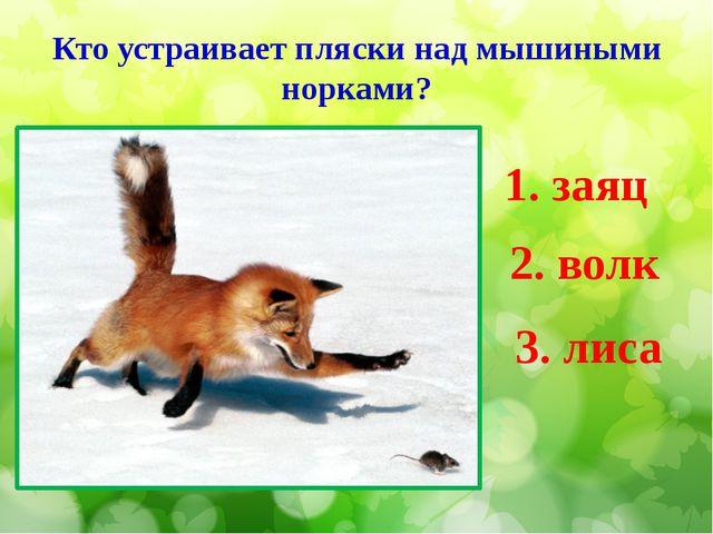Кто устраивает пляски над мышиными норками? 1. заяц 2. волк 3. лиса