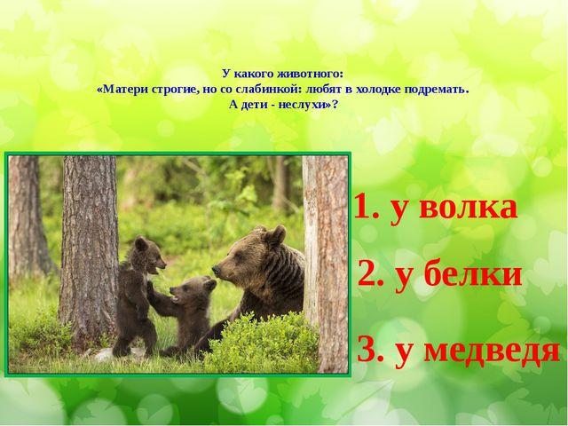У какого животного: «Матери строгие, но со слабинкой: любят в холодке подрема...