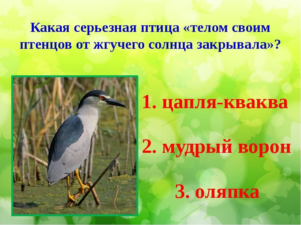 Какая серьезная птица «телом своим птенцов от жгучего солнца закрывала»? 1. ц...