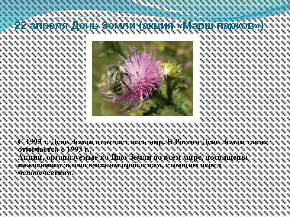 22 апреля День Земли (акция «Марш парков») С 1993 г. День Земли отмечает весь...