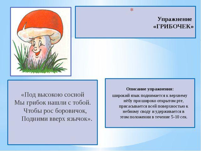 Упражнение «ГРИБОЧЕК» «Под высокою сосной Мы грибок нашли с тобой. Чтобы...