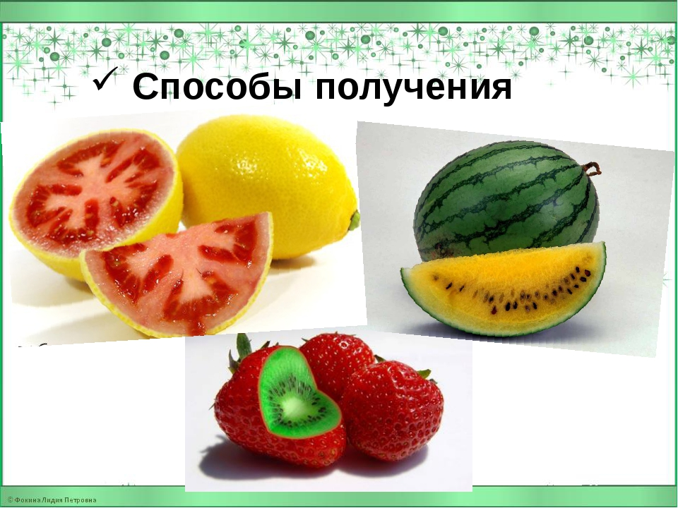 Способы получения ГМО