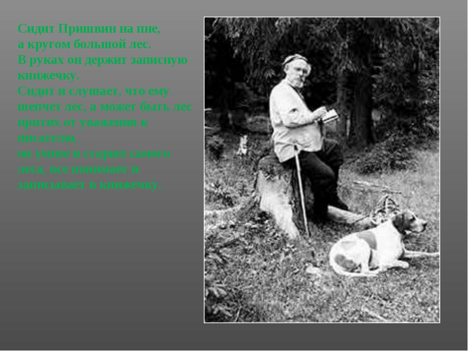 Сидит Пришвин на пне, а кругом большой лес. В руках он держит записную книже...
