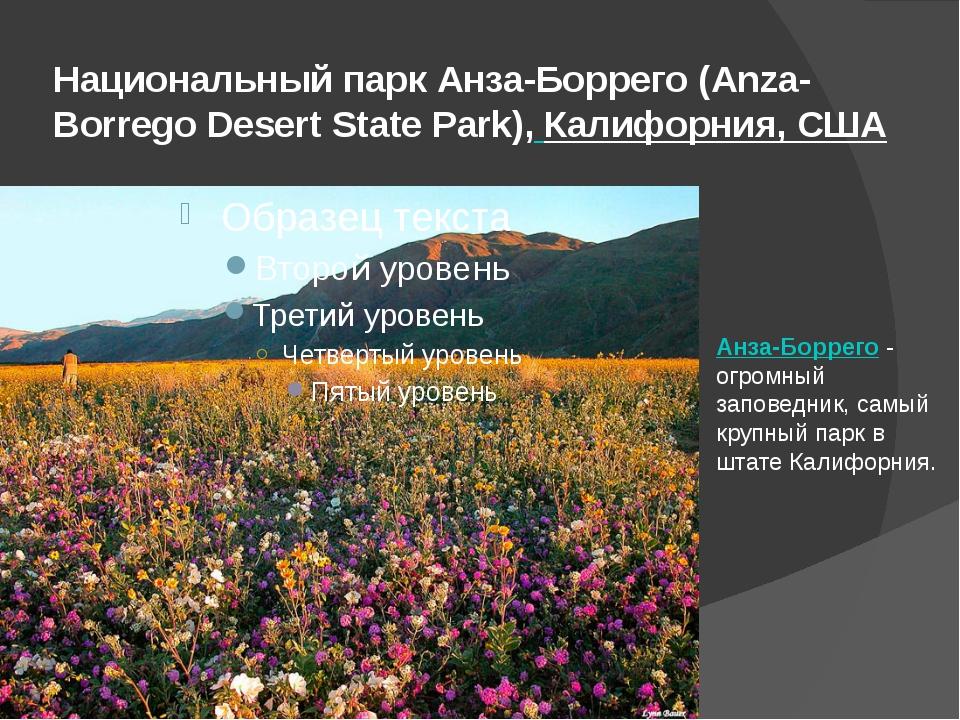 Национальный парк Анза-Боррего (Anza-Borrego Desert State Park),Калифорния,...