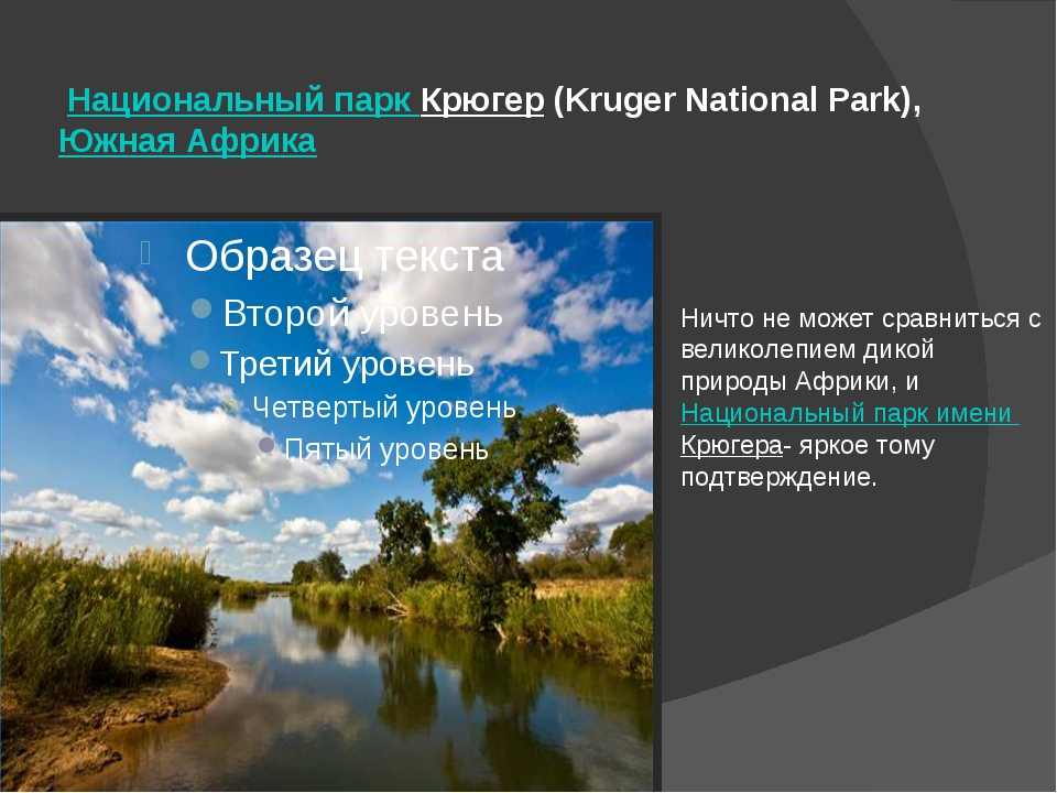 Национальный парк Крюгер(Kruger National Park), Южная Африка Ничто не может...