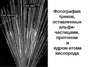 Фотография треков, оставленных альфа-частицами, протоном и ядром атома кислор