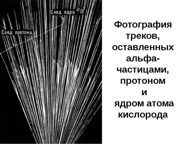 Фотография треков, оставленных альфа-частицами, протоном и ядром атома кислор...
