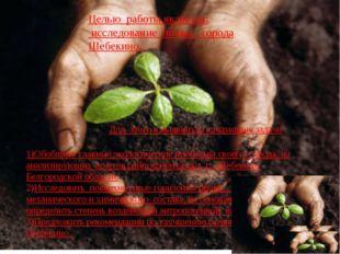Целью работы является: исследование почвы города Шебекино. Для этого я выдвин