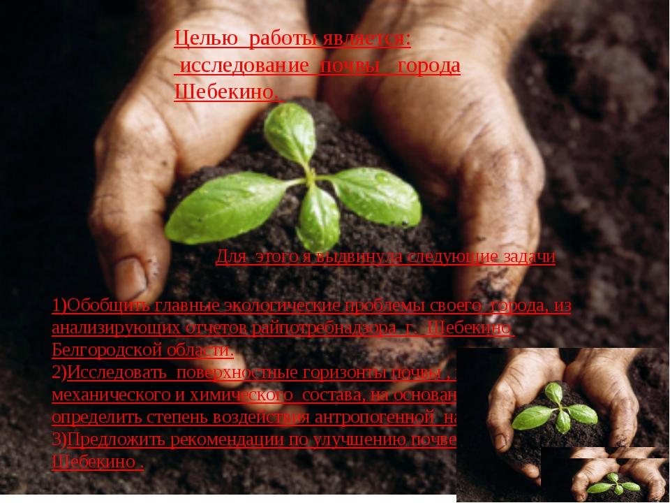 Целью работы является: исследование почвы города Шебекино. Для этого я выдвин...