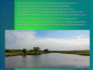 Будучи удаленным от интенсивной промышленности Кашарский район имеет определе