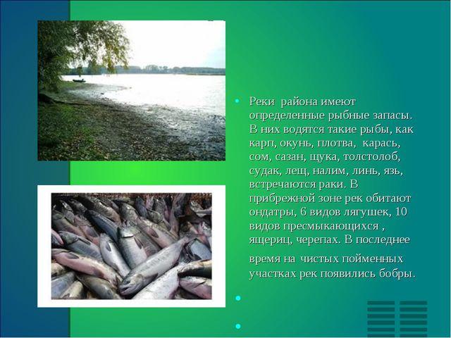 Реки  района имеют определенные рыбные запасы. В них водятся такие рыбы, как...