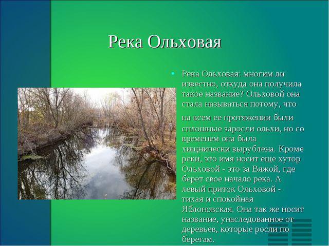 Река Ольховая Река Ольховая: многим ли известно, откуда она получила такое н...