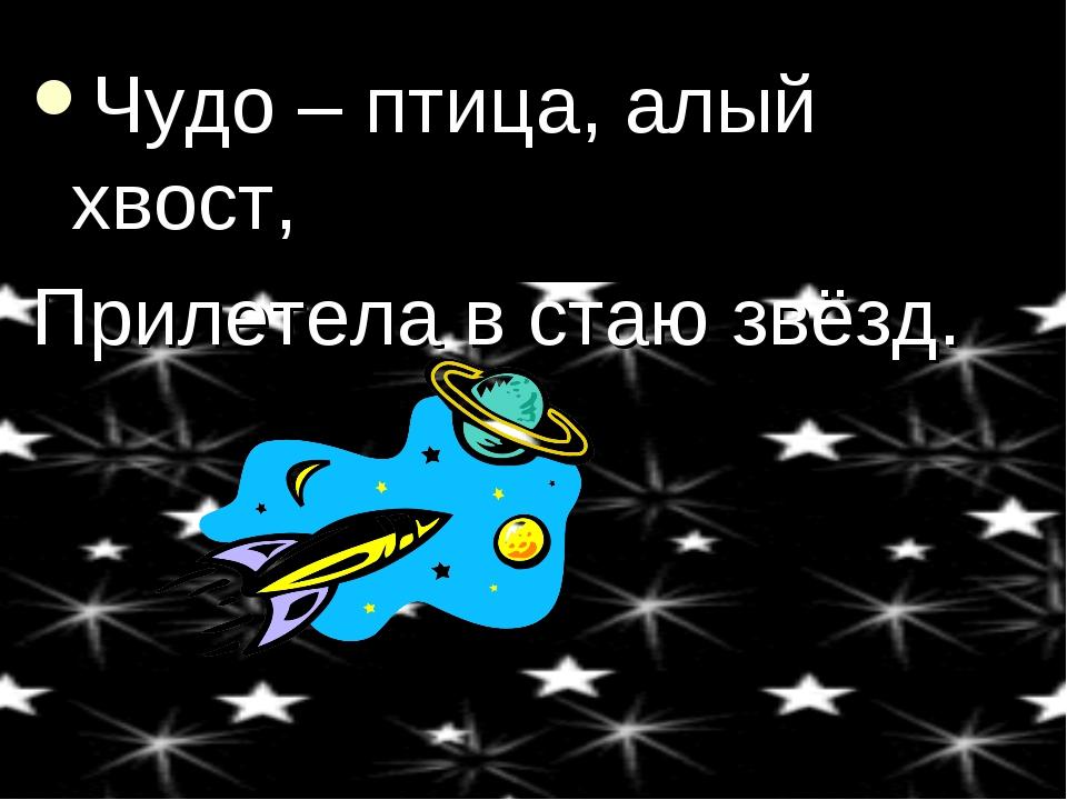 Чудо – птица, алый хвост, Прилетела в стаю звёзд.