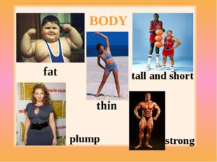 BODY fat thin tall and short strong plump