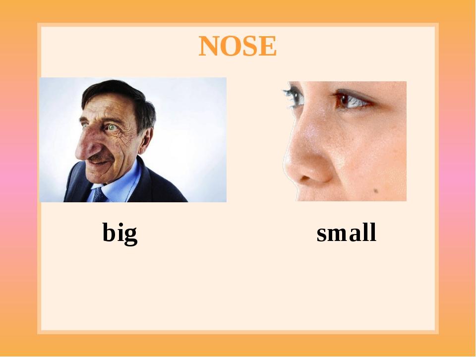 NOSE big small