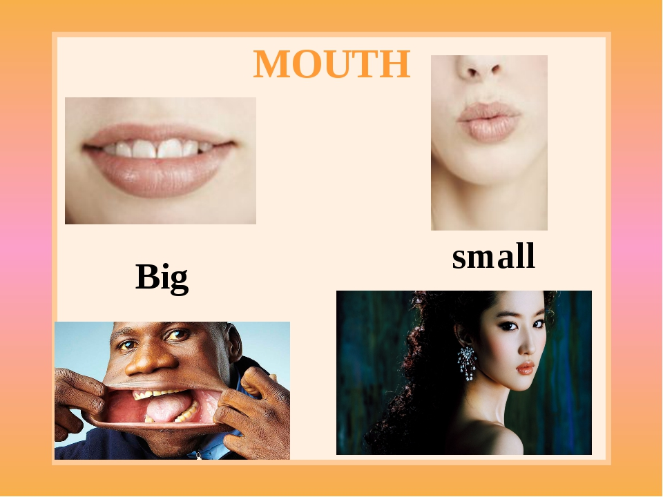 MOUTH Big small