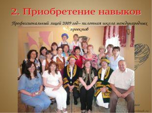 Профессиональный лицей 2009 год– пилотная школа международных проектов