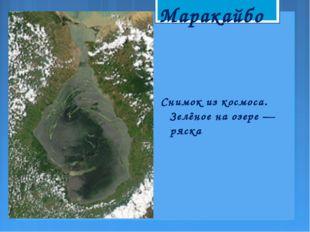 Снимок из космоса. Зелёное на озере— ряска Маракайбо