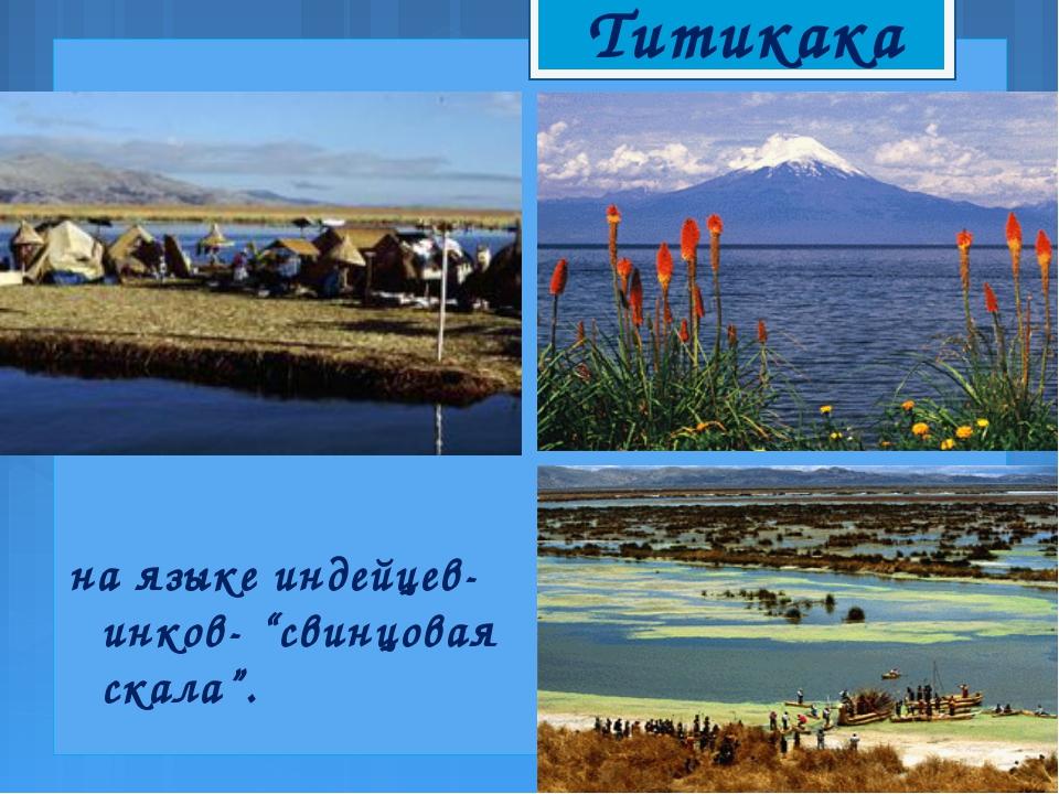 "Титикака на языке индейцев-инков- ""свинцовая скала""."