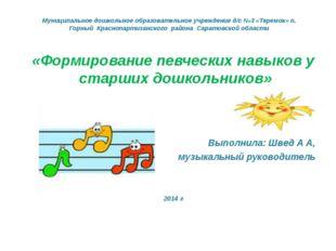 Муниципальное дошкольное образовательное учреждение д/с №3 «Теремок» п. Горны