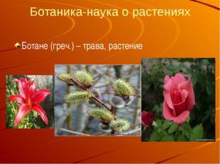 Ботаника-наука о растениях Ботане (греч.) – трава, растение